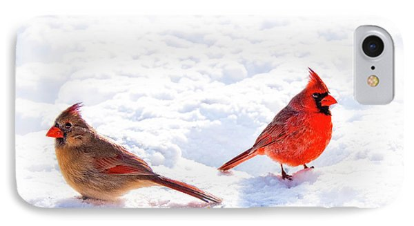 Cardinal Couple Phone Case by Tamyra Ayles