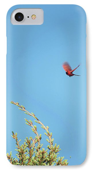 Cardinal In Full Flight Digital Art Phone Case by Thomas Woolworth