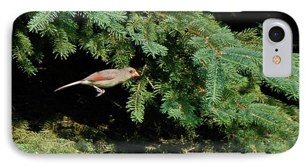 IPhone Case featuring the photograph Cardinal Just A Hop Away by Thomas Woolworth