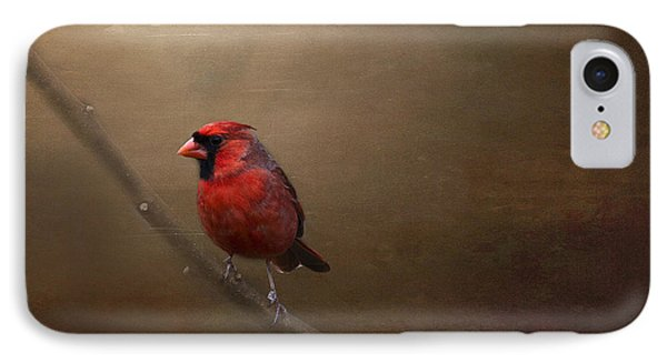 Cardinal Old Master - Artist Cris Hayes IPhone Case
