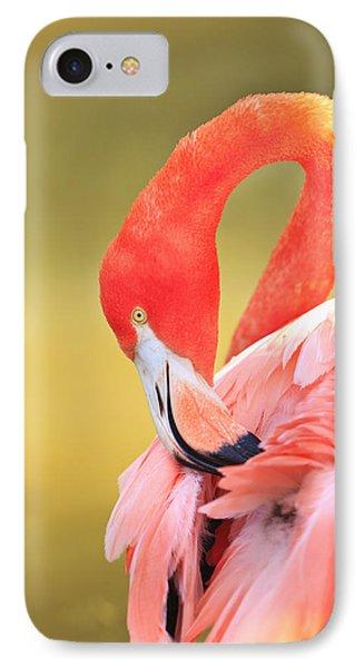 Caribbean Flamingo Phoenicopterus Rube Phone Case by Stuart Westmorland