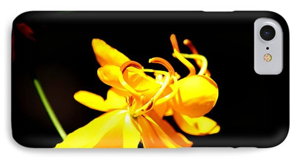 Cassia Blossom Phone Case by Theresa Willingham