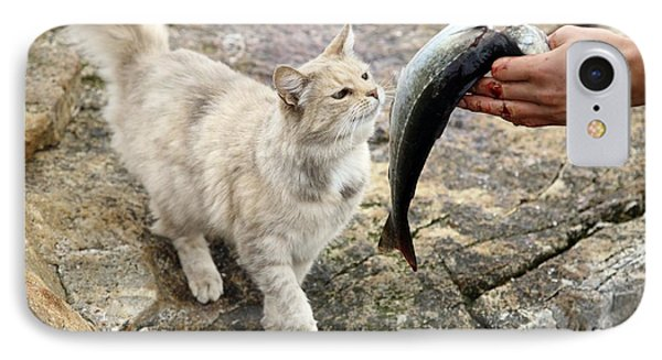 Cat Being Fed A Fish Phone Case by Bjorn Svensson