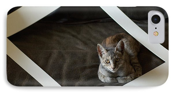 Cat In A Frame Phone Case by Micah May