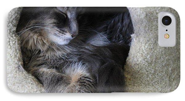 Cat In A Hole IPhone Case