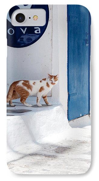 Cat In Mykonos IPhone Case by Laura Melis