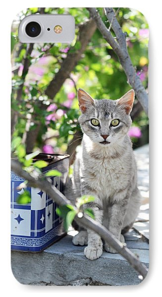 Cat Of Mykonos IPhone Case by Laura Melis