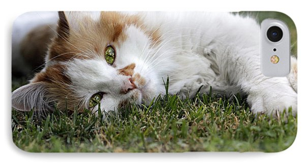 IPhone Case featuring the photograph Cat On The Grass by Raffaella Lunelli