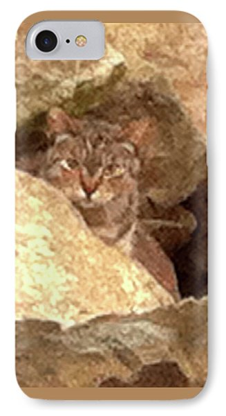 Cat On The Rocks IPhone Case