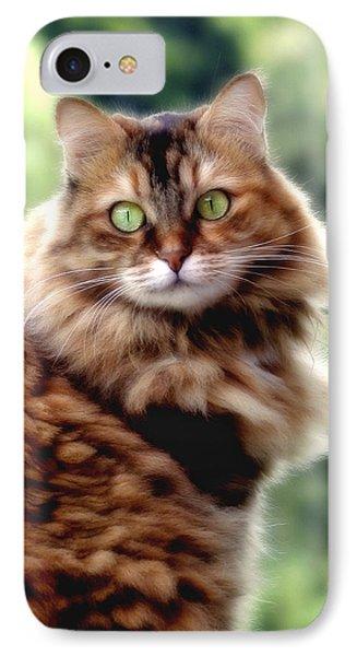 IPhone Case featuring the photograph Cat Portrait by Raffaella Lunelli
