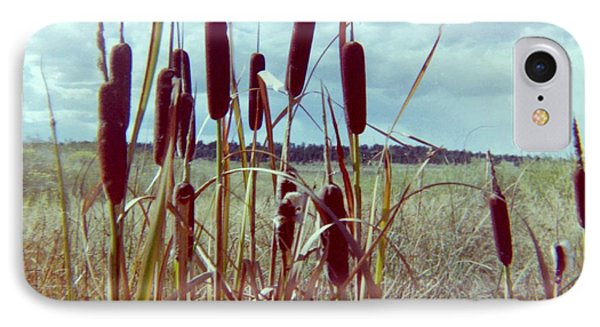 IPhone Case featuring the photograph Cat Tails by Bonfire Photography