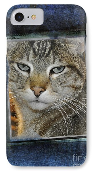Cat Through A Tiny Window Phone Case by Mary Machare