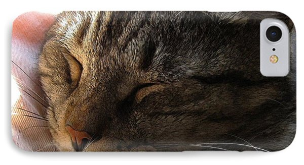 Catnap IPhone Case by Dale   Ford
