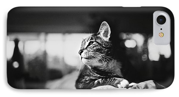 Cats Portrait Phone Case by Sumit Mehndiratta
