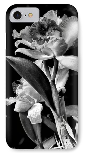 Cattleya - Bw Phone Case by Christopher Holmes
