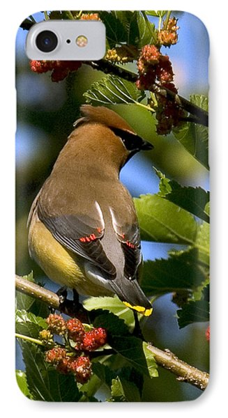 IPhone Case featuring the photograph Cedar Waxwing Dsb056 by Gerry Gantt