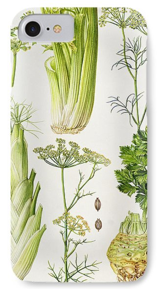 Celery - Fennel - Dill And Celeriac  Phone Case by Elizabeth Rice