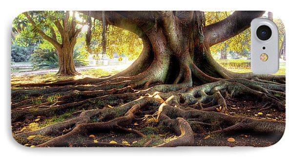 Centenarian Tree IPhone Case by Carlos Caetano