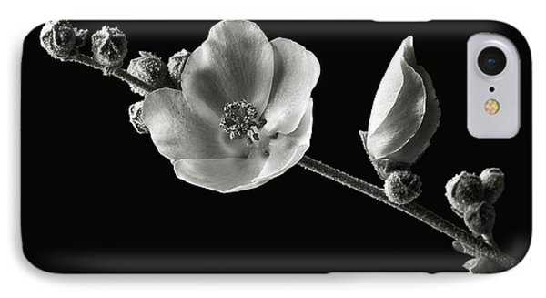 IPhone Case featuring the photograph Chaparral Mallow In Black And White by Endre Balogh
