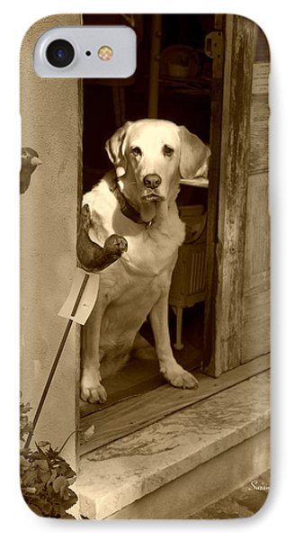 Charleston Shop Dog In Sepia IPhone Case by Suzanne Gaff