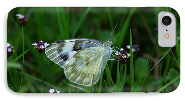 Checkered White Butterfly Phone Case by Barbara Bowen