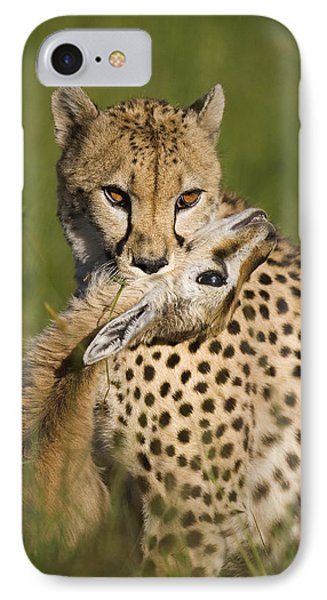 Cheetah Acinonyx Jubatus With Its Kill Phone Case by Suzi Eszterhas