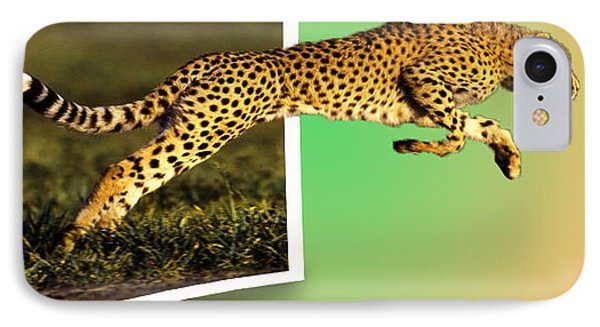 Cheetah Phone Case by Anthony Caruso