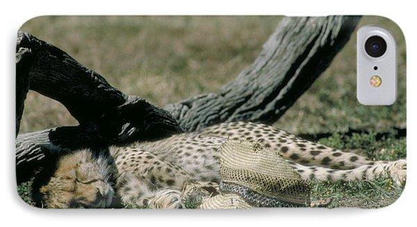 Cheetah Cub Sleeping And Guarding Hat Phone Case by Greg Dimijian