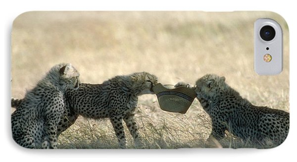 Cheetah Cubs Play With Hat Phone Case by Greg Dimijian