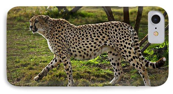 Cheetah  IPhone 7 Case