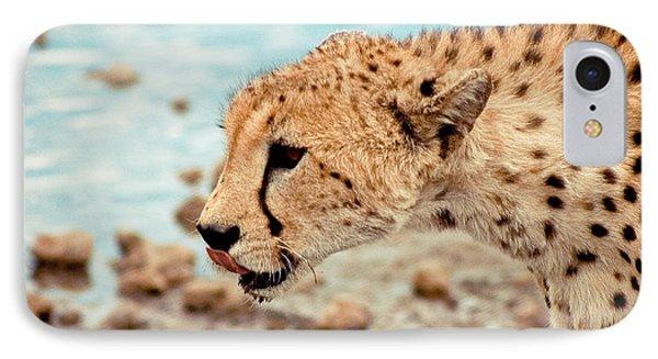 Cheetah Headshot IPhone Case by Darcy Michaelchuk