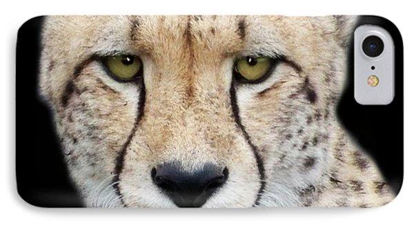 IPhone Case featuring the photograph Cheetah by Lynn Bolt