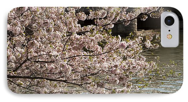 IPhone Case featuring the photograph Cherry Blossom On Potomic by Darleen Stry