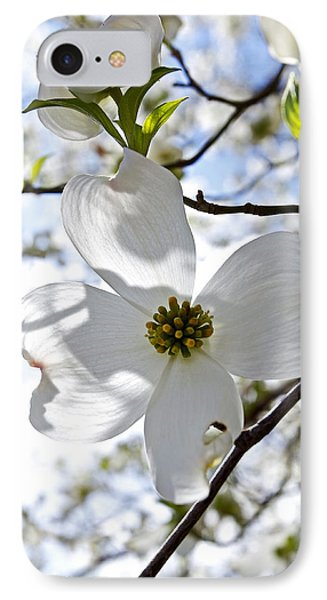 Cherry Blossoms I Phone Case by Glennis Siverson