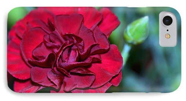 Cherry Red Carnation Phone Case by Sandi OReilly