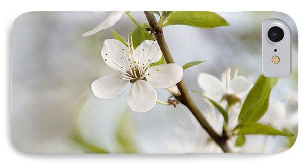 Cherry Tree Blossom IPhone Case by Agnieszka Kubica