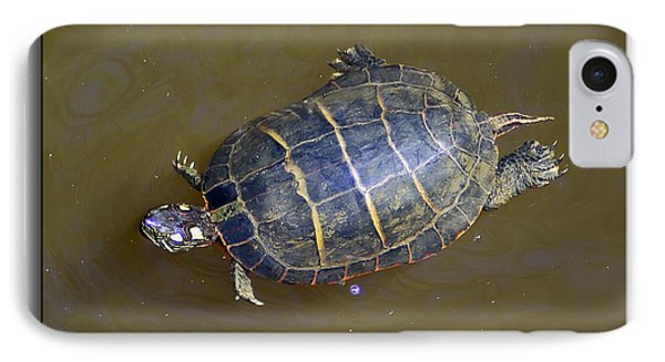 Chester River Turtle Phone Case by Brian Wallace