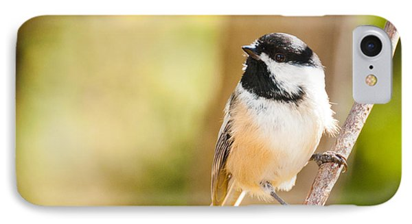 IPhone Case featuring the photograph Chickadee by Cheryl Baxter