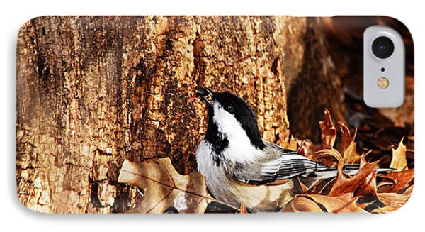 Chickadee With Sunflower Seed Phone Case by Larry Ricker