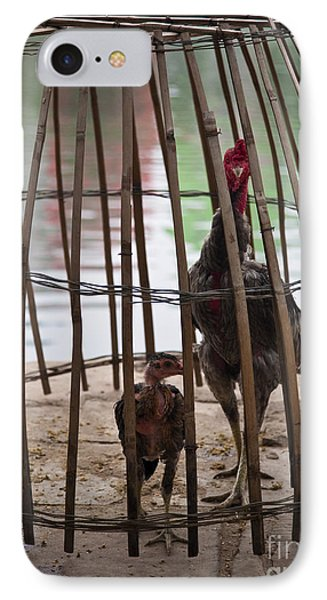 Chickens In Bamboo Cage Phone Case by David Buffington