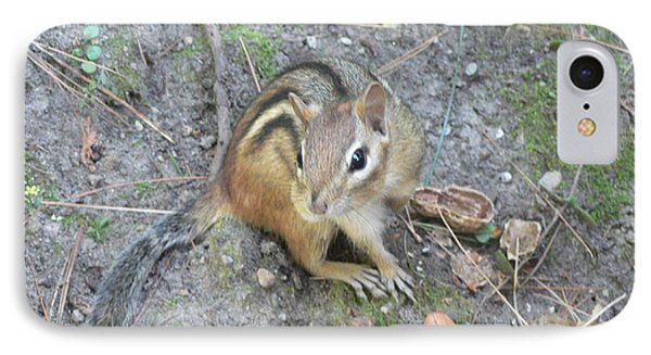IPhone Case featuring the photograph Chipmunk Feast by Laurel Best