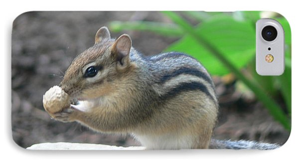 IPhone Case featuring the photograph Chipmunk by Laurel Best