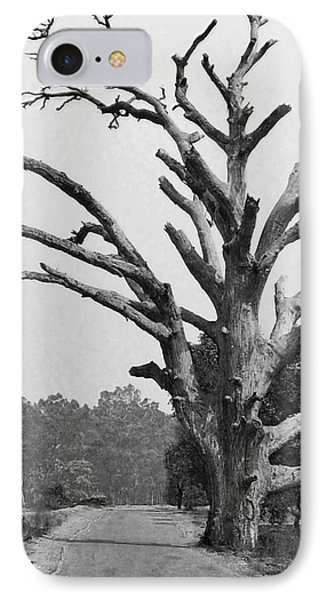 Chiseled Tree In Highway Phone Case by Sumit Mehndiratta