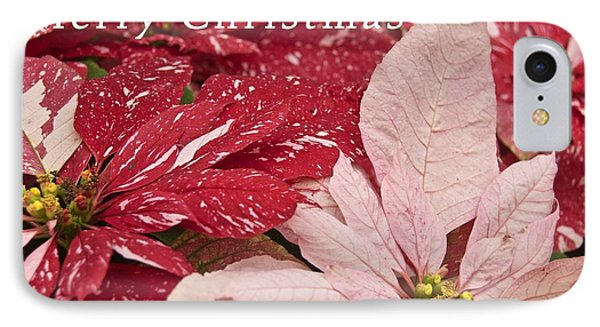 Christmas Poinsettias Phone Case by Michael Peychich