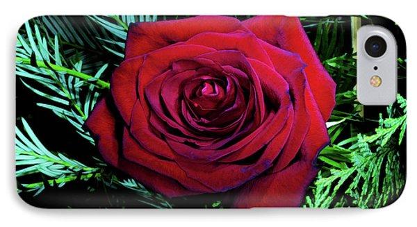Christmas Rose Phone Case by Mariola Bitner