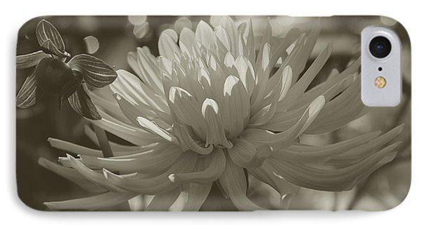 Chrysanthemum In Bloom Phone Case by Xueling Zou