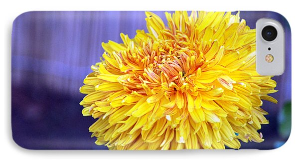 Chrysanthemum Phone Case by Pravine Chester