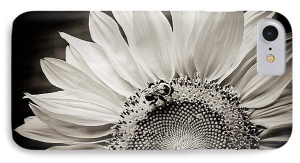 Classic Sunflower IPhone Case by Sara Frank