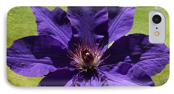Clematis On Stone IPhone Case by Rick Friedle