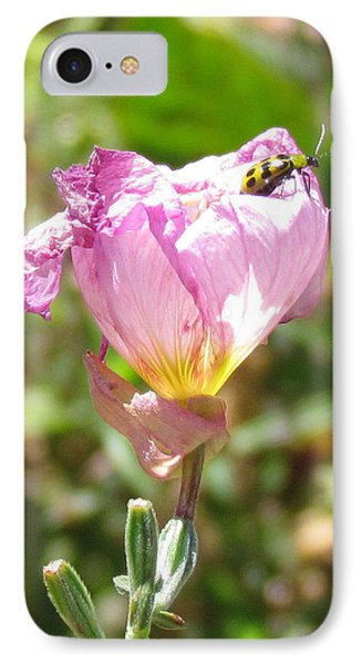Climbing The Mexican Evening Primrose IPhone Case by Bonnie Muir